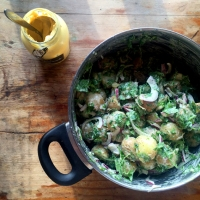 Summer coriander potato salad