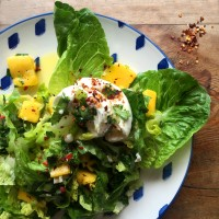 Mango mozzarella salad with chilli & lime dressing